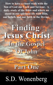 Finding Jesus Christ In The Gospel Of John Front Cover_editado-1