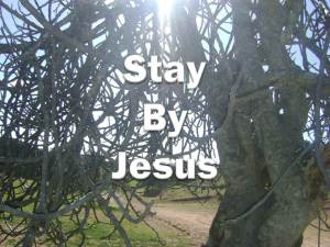 Stay By Jesus