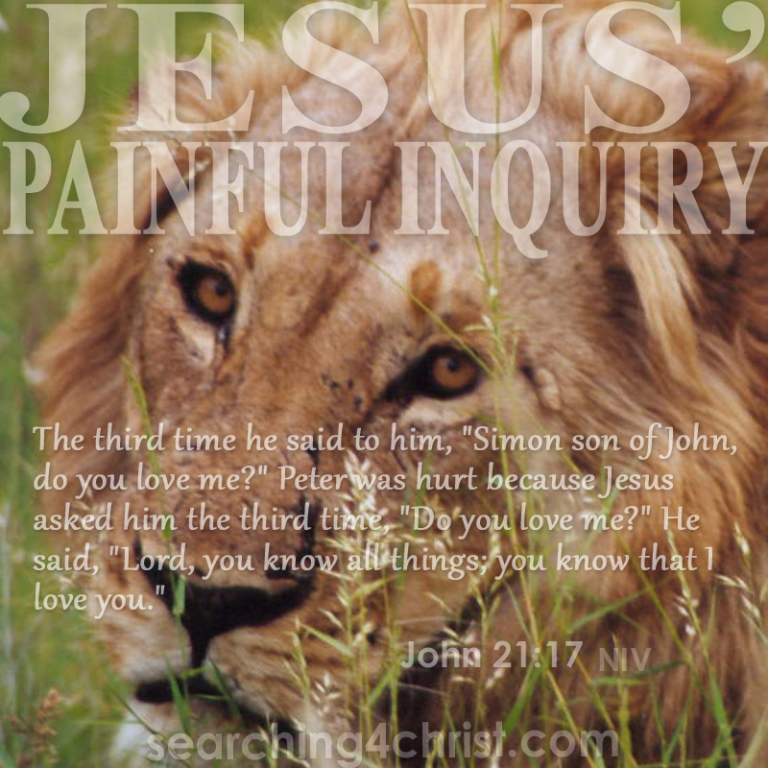 Jesus´ Painful Inquiry
