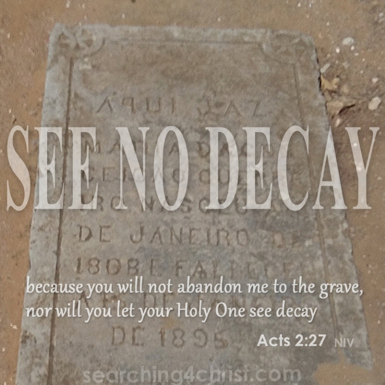 See No Decay