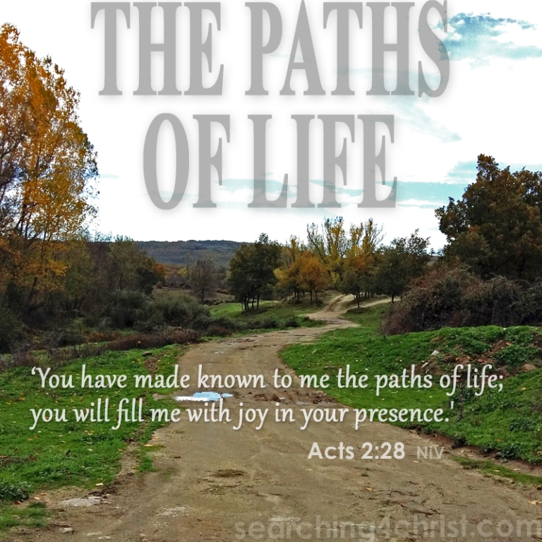 The Paths Of Life