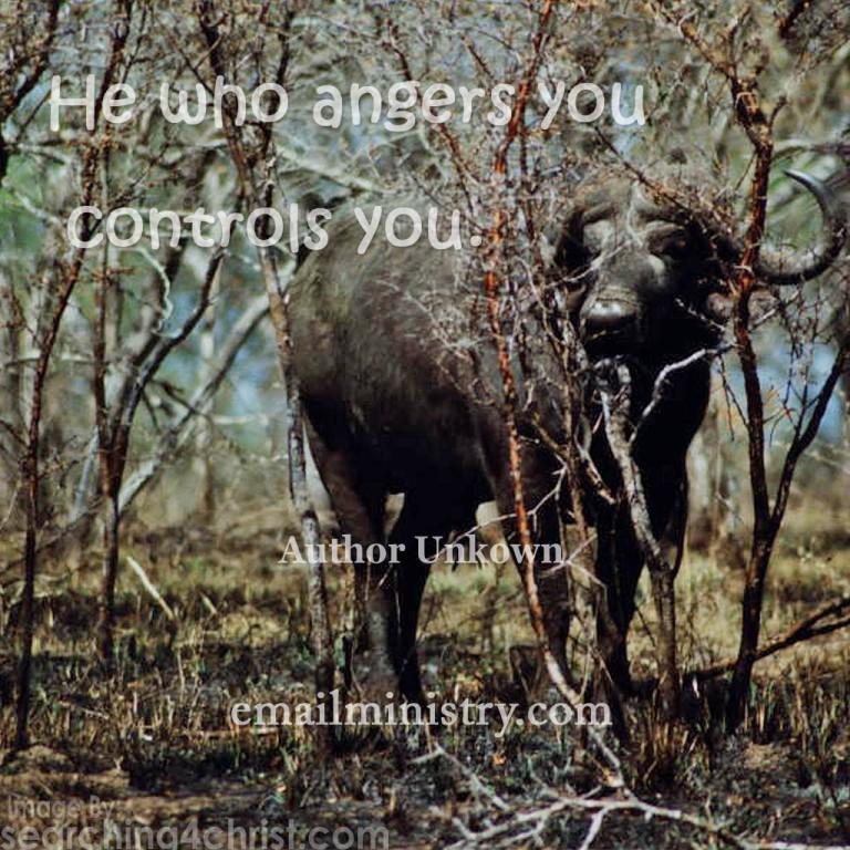 he-who-angers-you
