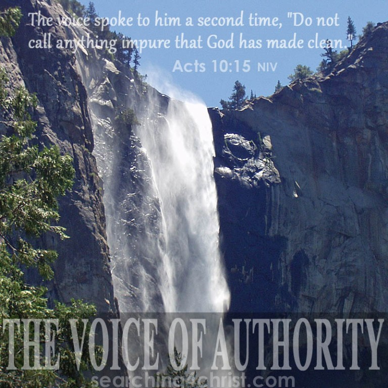 the-voice-of-authority