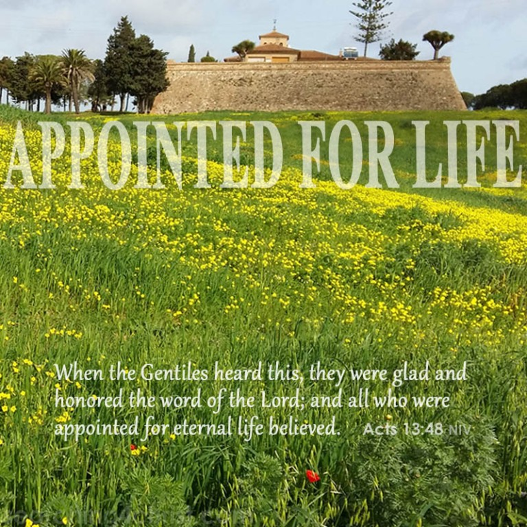 appointed-for-life