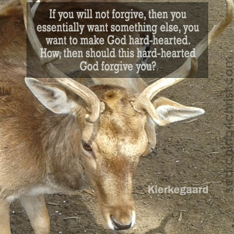 If You Will Not Forgive