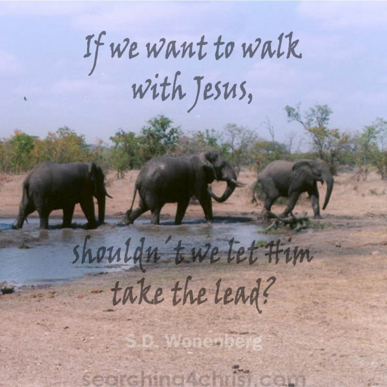 Want To Walk With Jesus