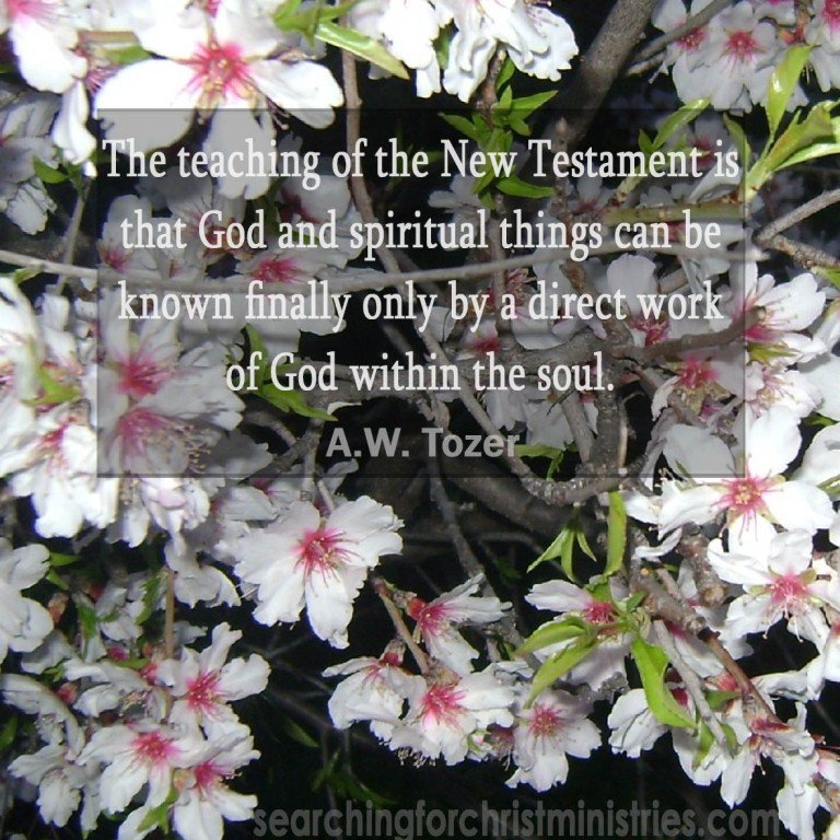 The Teaching Of The New Testament