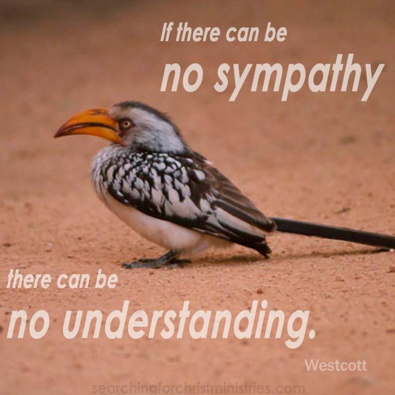 No Sympathy, No Understanding