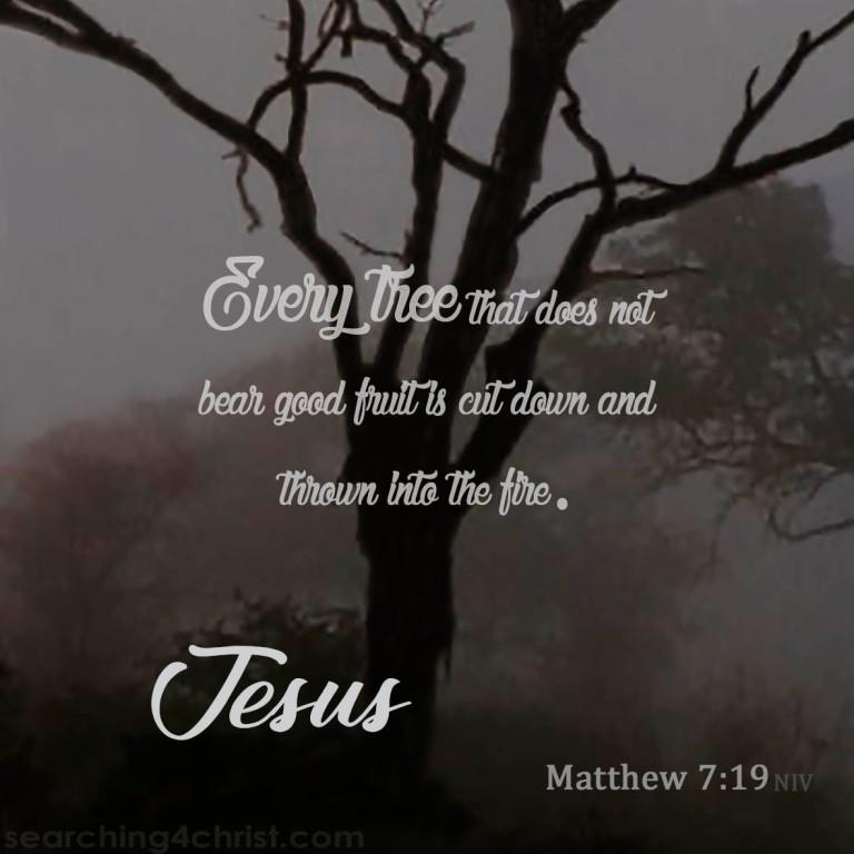 Matthew 7:19