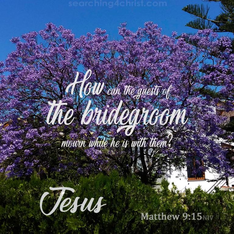 Matthew 9:15