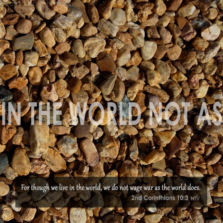 In the World Not As