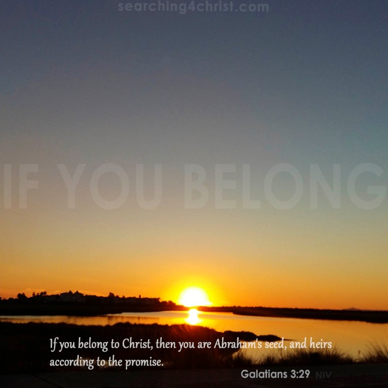 If You Belong