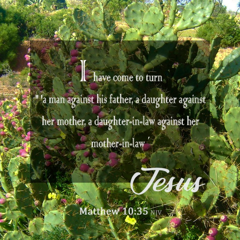 Matthew 10:35