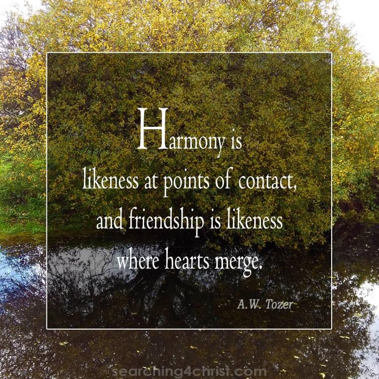 Harmony and Friendship