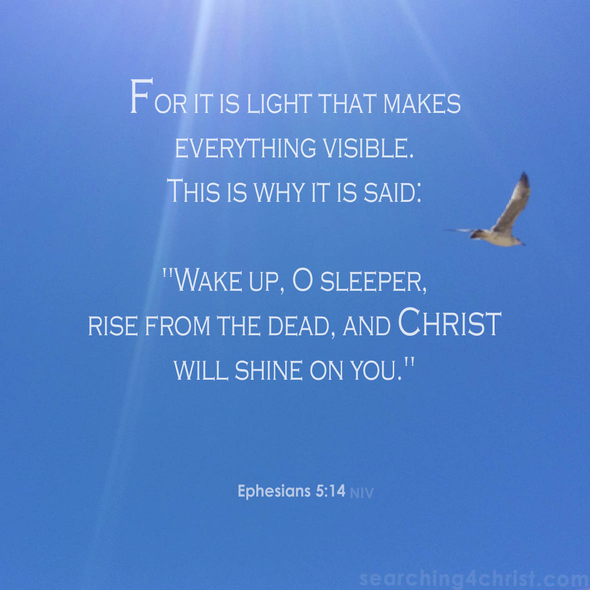 Wake Up – Searching For Christ