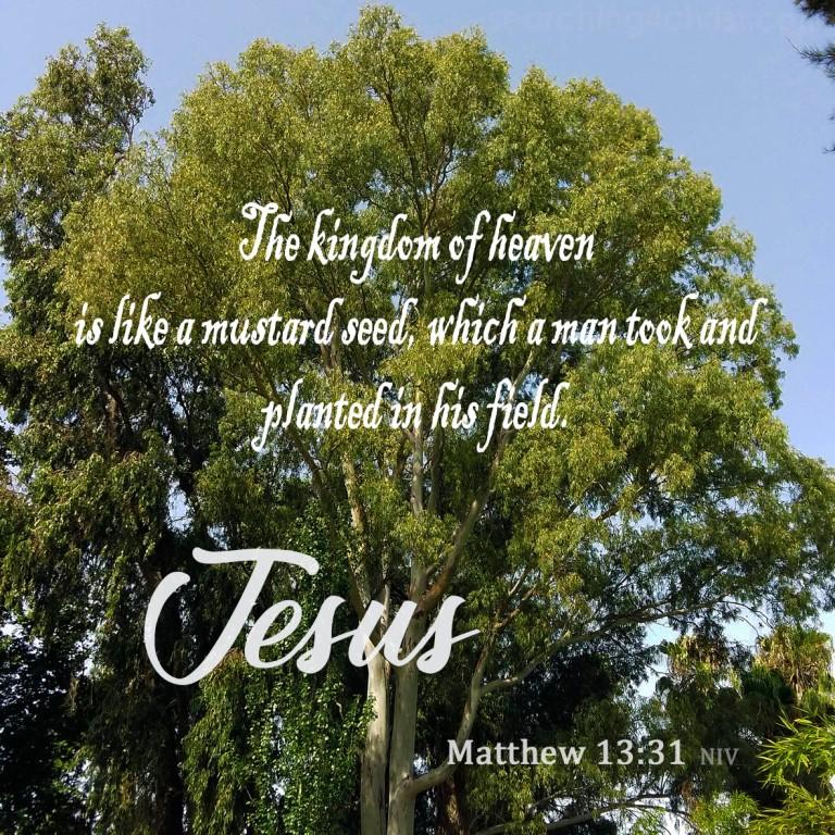 Matthew 13:31