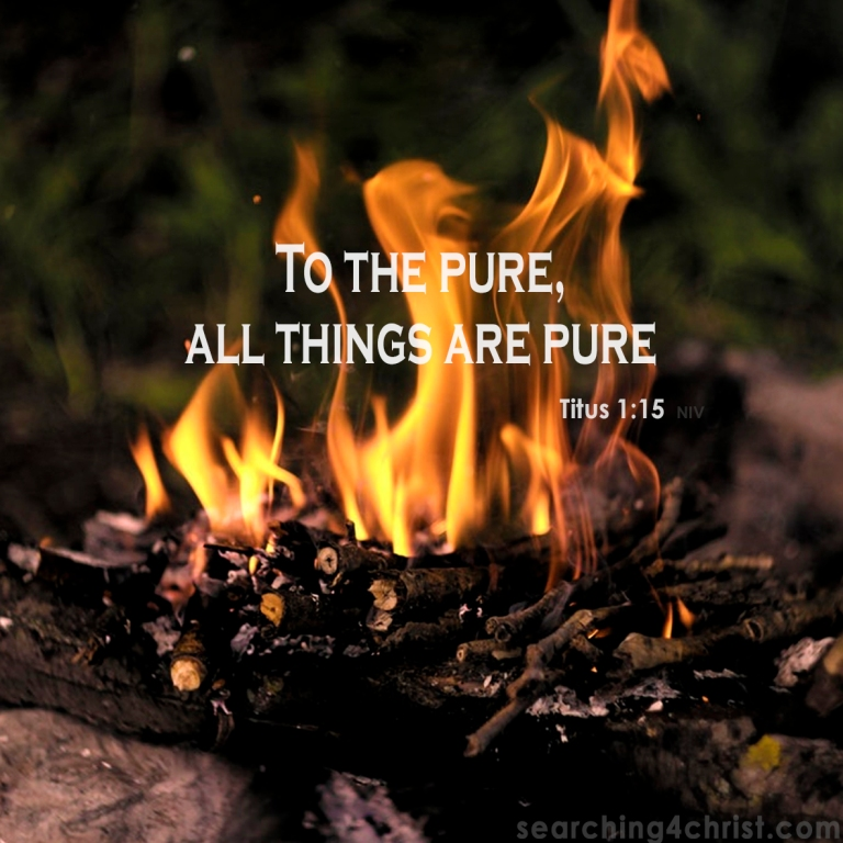 Titus 1:15 The Pure