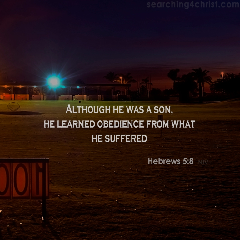Hebrews 5:8 Learn From Suffering