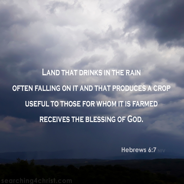 Hebrews 6:7 Rain On Us.jpg