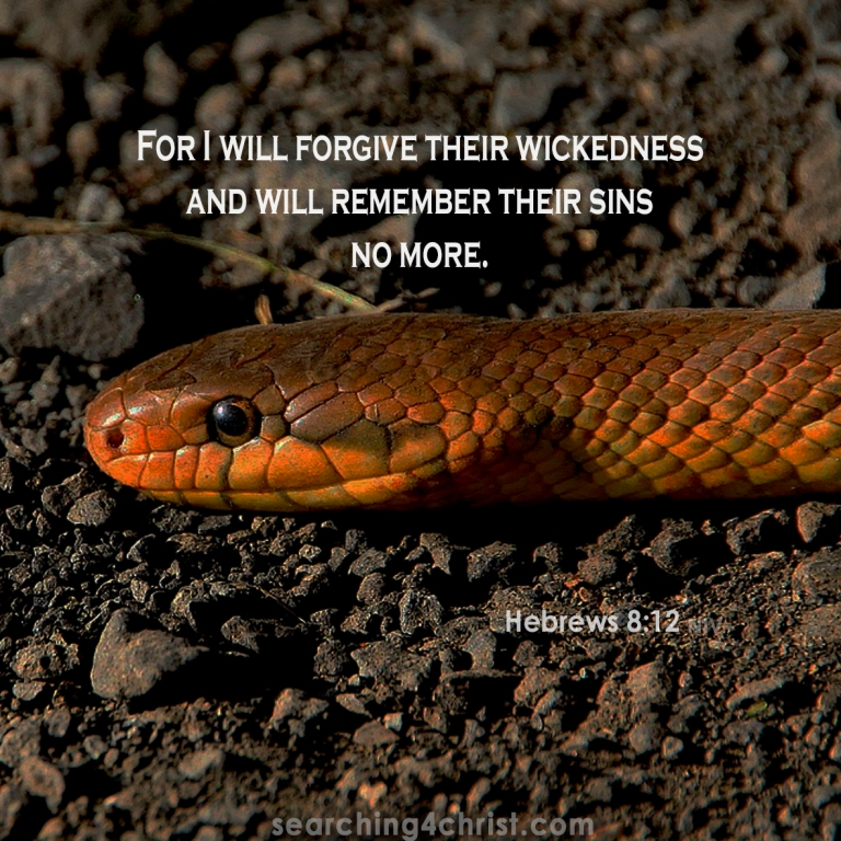 Hebrews 8:12 forgive wickedness