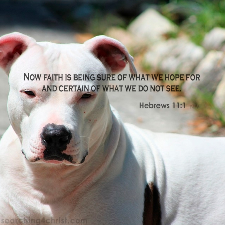 Hebrews 11:1 Faith Is