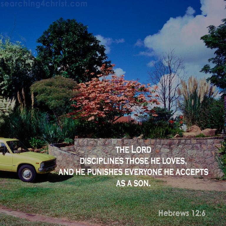 Hebrews 12:6 Discipline