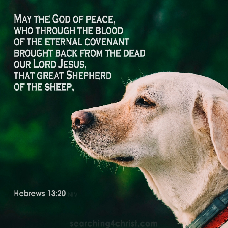 Hebrews 13:20 The Great Shepherd