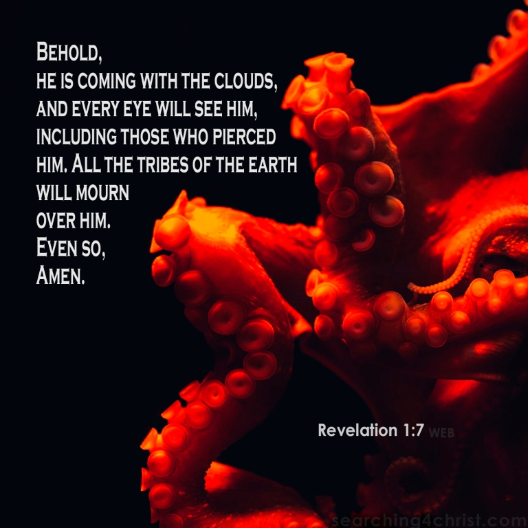 Revelation 1:7 Every Eye Will See