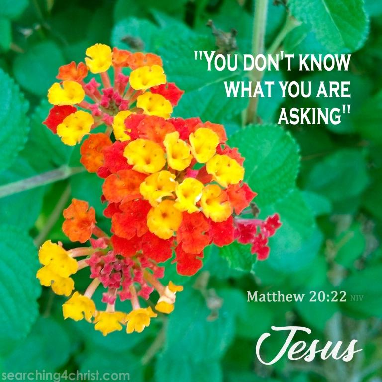 Matt 20:22