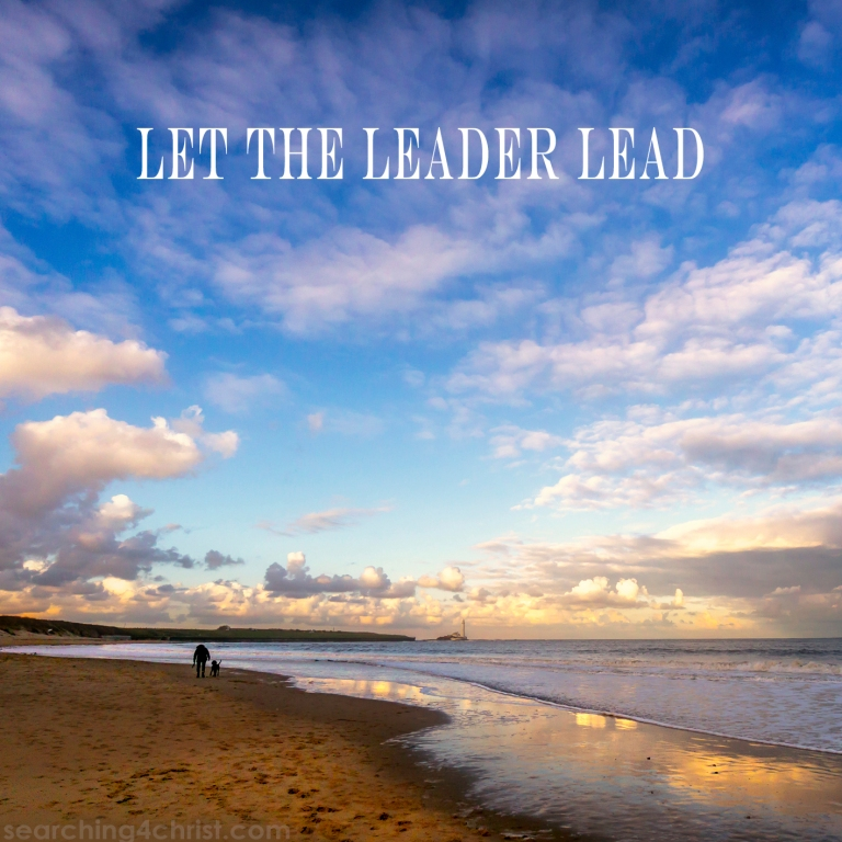 Let the Leader Lead