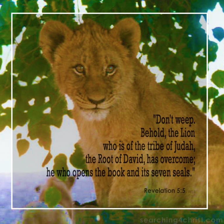 Revelation 5:5 Behold the Lion