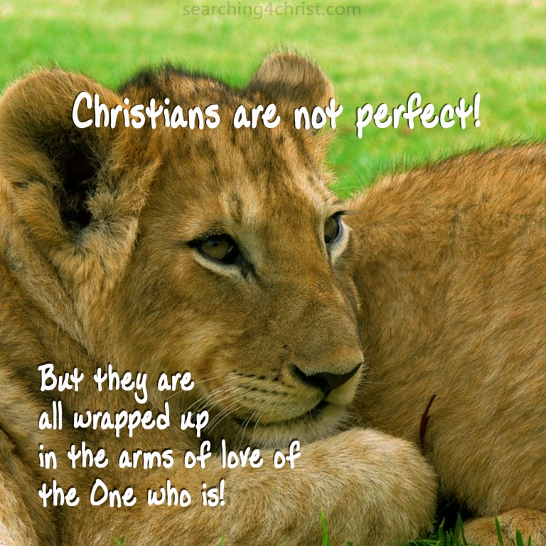 Christians are Not Perfect
