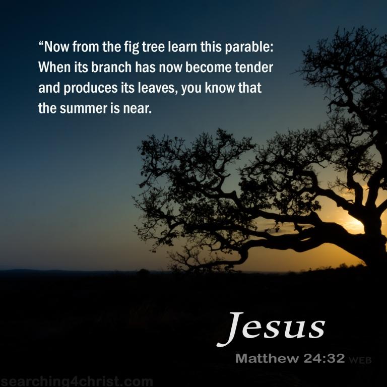 Matthew 24:32