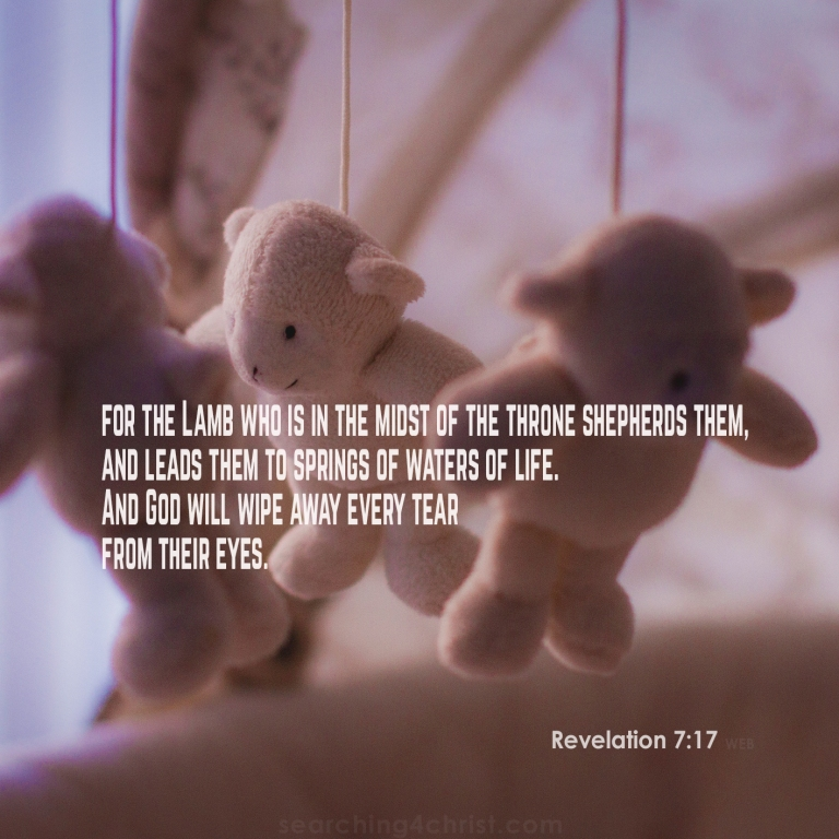 Revelation 7:17 Every Tear