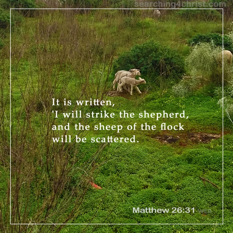 Matthew 26:31