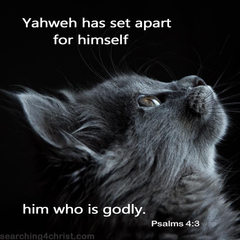 Psalm 4:3